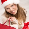 Stock Photo: Holiday shopper
