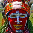 North American Indian in full dress — Stock Photo