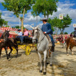 Horse Fair in Jerez, decorated with red and yellow leggings — Stock Photo