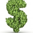 Dollar sign from green leaves — Stock Photo