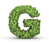 Letter G from green leaves — Stock Photo