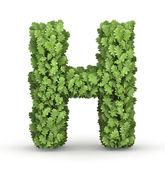 Yeşil yaprakları s harfi — Stok fotoğraf