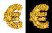 Gold shiny stars euro — Stock Photo