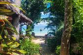 Tropic sea view — Stock Photo