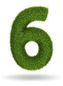 Número 6 de la hierba natural — Foto de Stock