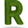 Natural grass letter R — Stock Photo #27320699