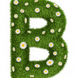 Stock Photo: Natural grass letter B