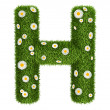 Natural grass letter H — Stock Photo