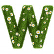 Natural grass letter W — Stock Photo #27793737