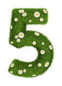Número 5 de hierba natural — Foto de Stock