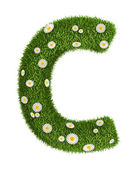 Natural grass letter C — Stock Photo