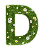 Naturligt gräs brev d — Stockfoto