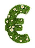 Natural grass euro — Stock Photo