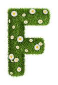 Erba naturale lettera f — Foto Stock