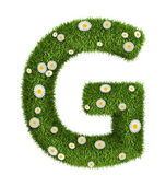 Natural grass letter G — Stock Photo