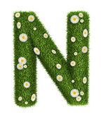 Doğal çim harf n — Stok fotoğraf
