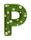 Natural grass letter P — Stock Photo