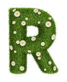 自然な草の手紙 r — ストック写真
