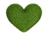Green grass heart — Stockfoto