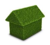 Casa verde hierba — Foto de Stock