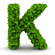 Stock Photo: Leaves font letter K