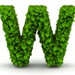 Stock Photo: Leaves font letter W