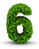 Number 6, green leaves font — Stock Photo