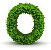 Leaves font letter O — Stock Photo