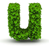 Leaves font letter u lowercase — Stock fotografie
