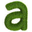 Stock Photo: Natural grass letter lowercase