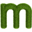 Stock Photo: Natural grass letter m lowercase