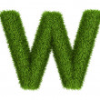 Stock Photo: Natural grass letter w lowercase