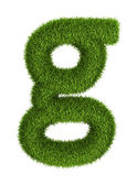 Natural grass letter g lowercase — Stock Photo