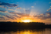 Sunset over river with forest — Stock Photo