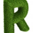 Natural grass letter R — Stock Photo