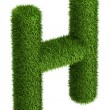 Natural grass letter H — Stockfoto #34158251
