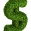 Natural grass dollar sign — Stockfoto