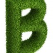 Natural grass letter B — Stock Photo #34162145