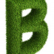 Natural grass letter B — Stock Photo