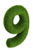 Natural grass number 9 — Stock Photo