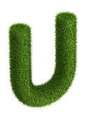 Natural grass letter U — Stock Photo