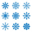 Vector frosty snowflakes — Stock Vector