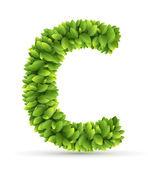 Letter  C,  vector alphabet of green leaves — Stock vektor