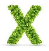 Letter  X,  vector alphabet of green leaves — Stock vektor