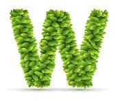 Letter W,  vector alphabet of green leaves — Stock vektor