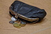 Purse with money coins — Foto de Stock