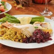 Turkey dinner — Stock Photo #13554103