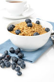 Granola with fresh blueberries — Stock Photo