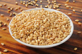 Fresh wheat kernels — Stock Photo