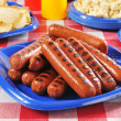 Picnic Hot Dogs - Stock Photo